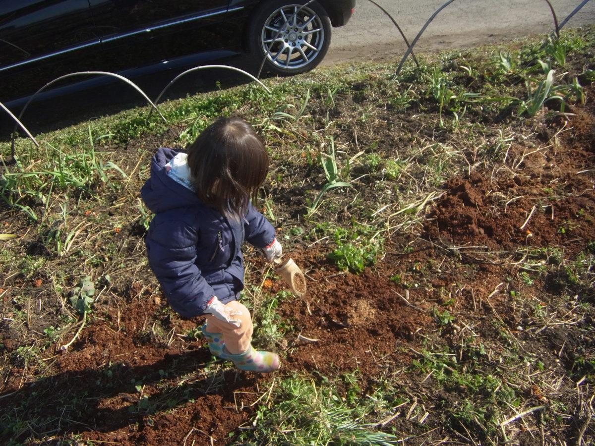 明確な目標設定と具体的行動課題の設定が、菜園活動の「ゲーム化」を可能にする